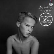"""SØLV - """"Filip"""" av Gry Ødegård"""
